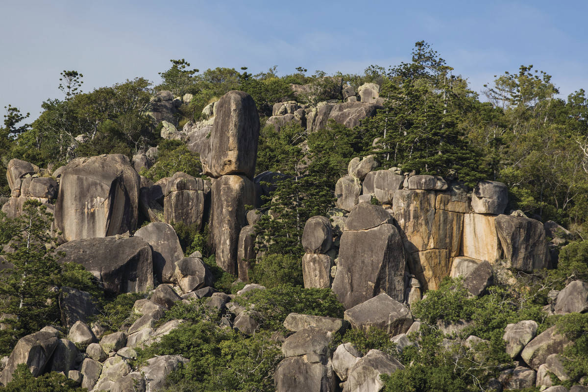 Boulders and trees on hill on Magnetic Island