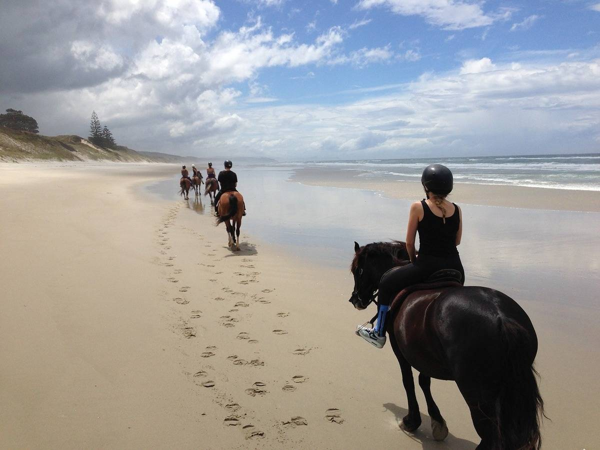 Middle Earth on horseback - New Zealand Trail Riding for