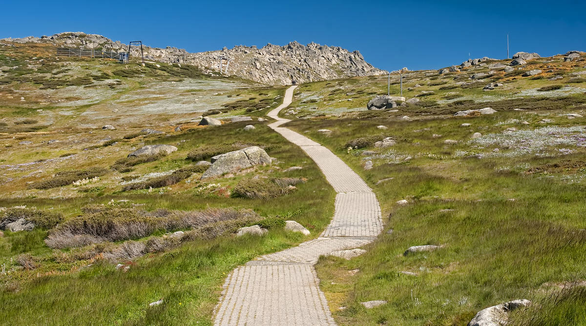 Kosciuszko National Park Facts For Kids