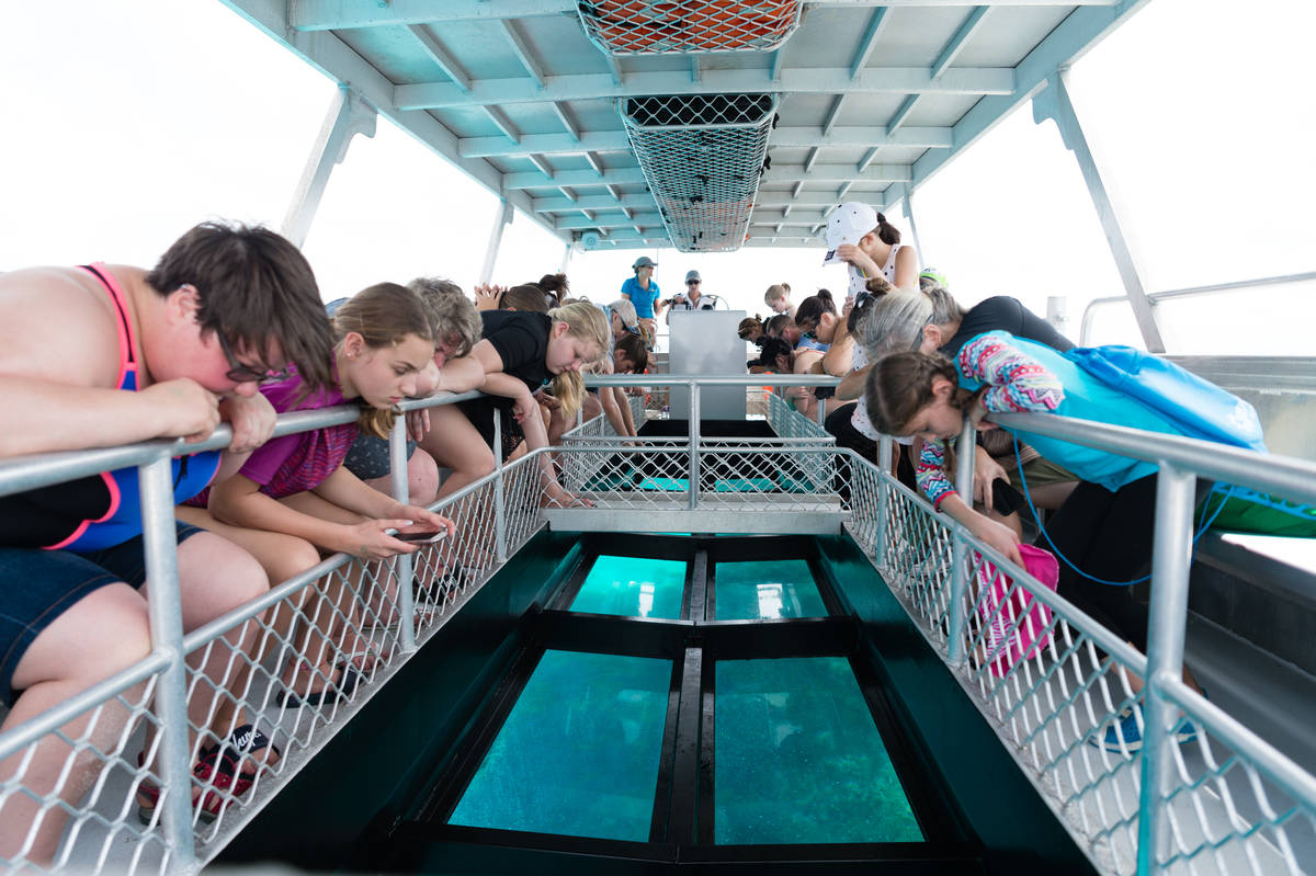 Tour group lean over rails of glass-bottom boat in Great Barrier Reef
