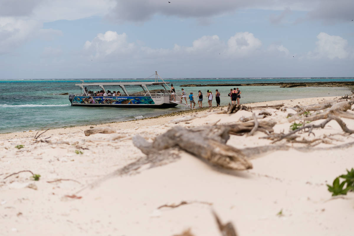 Sandy beach with tour group getting on a boat in the distance on Lady Musgrave Island