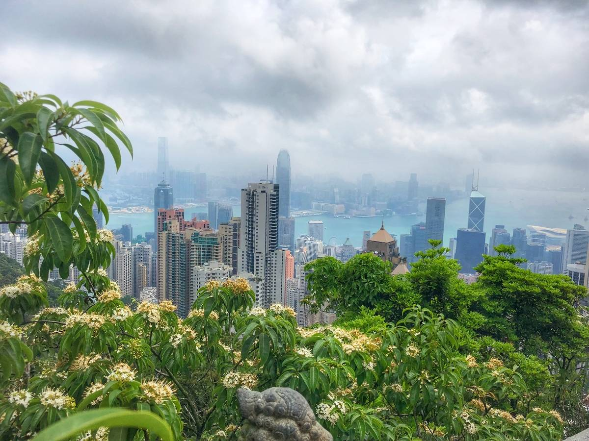 A spectacular view of Hong Kong from Victoria Peak.