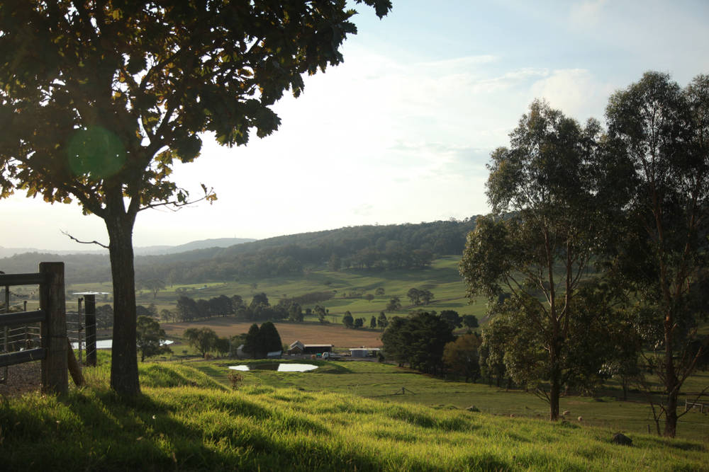 Scenery shot of a farm in Kangaroo Valley